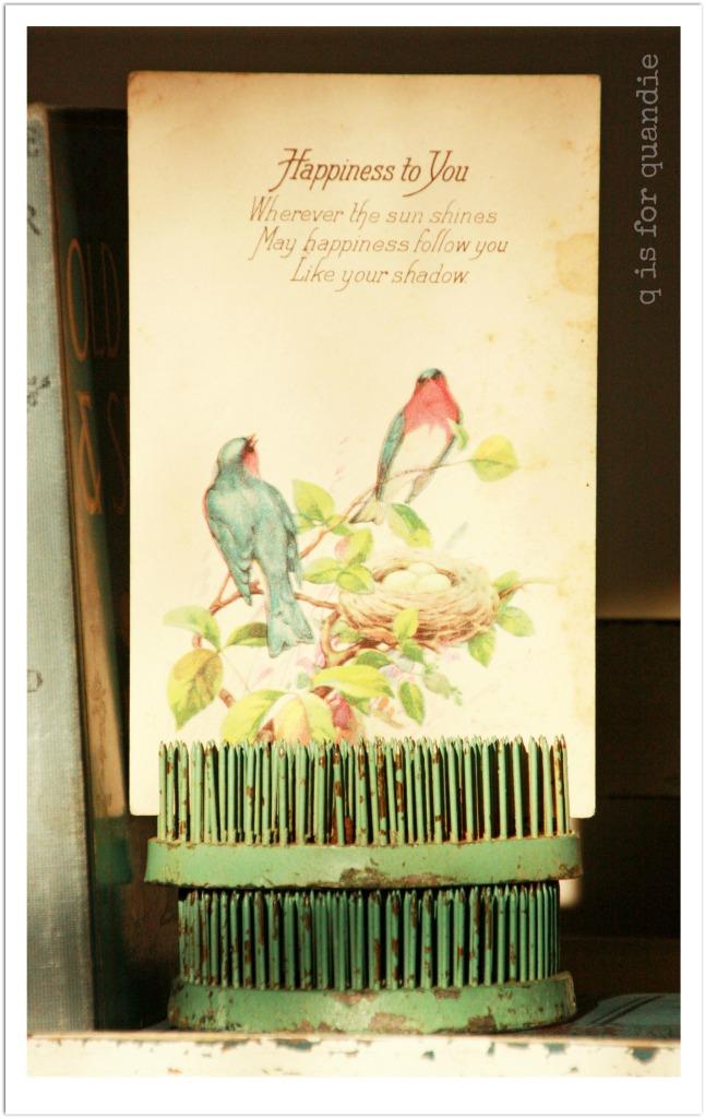 robins egg postcard