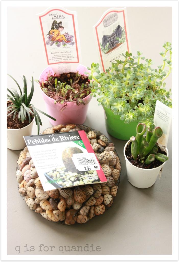tureen plants