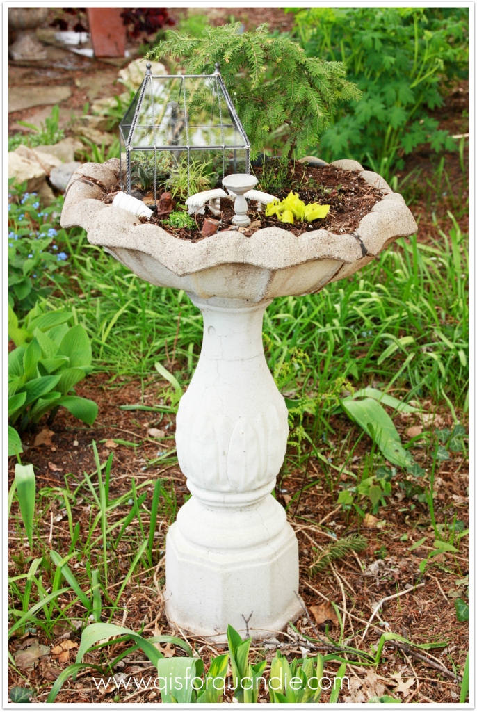 fairy garden 4