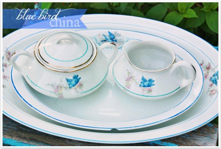 bluebird china 2