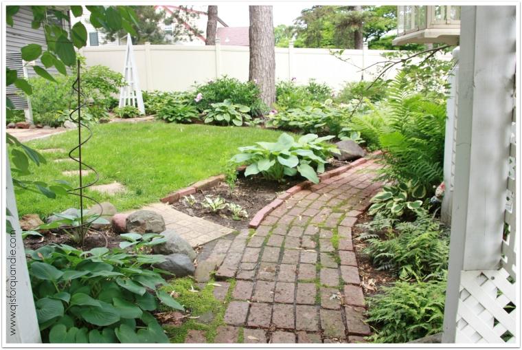 Sue's garden lawn