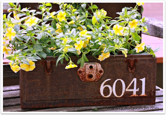 rusty toolbox planter