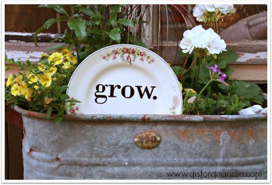 grow plate