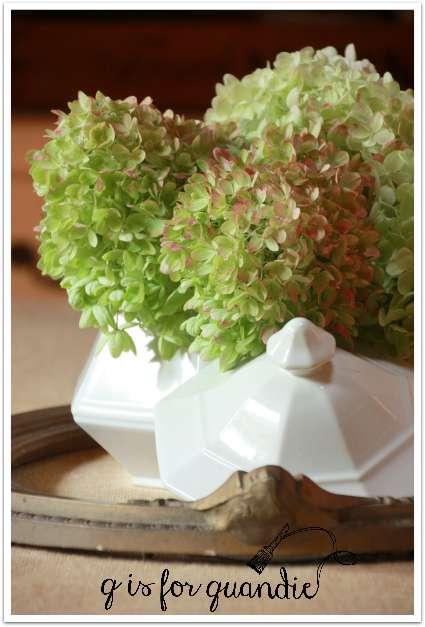 dining room hydrangeas