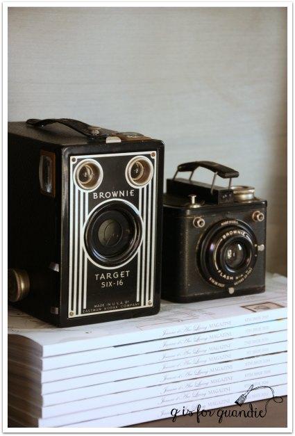 greyson cameras