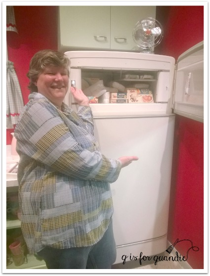 1-suburbia freezer