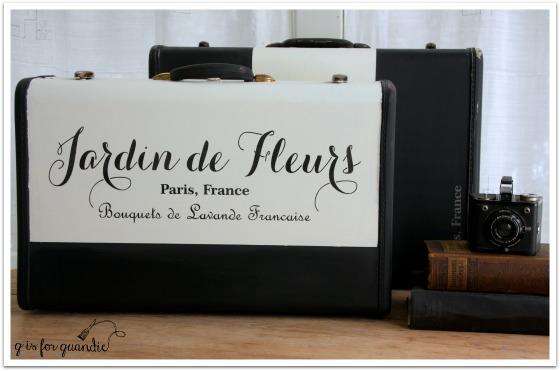 suitcase pair