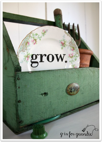 grow plate in box