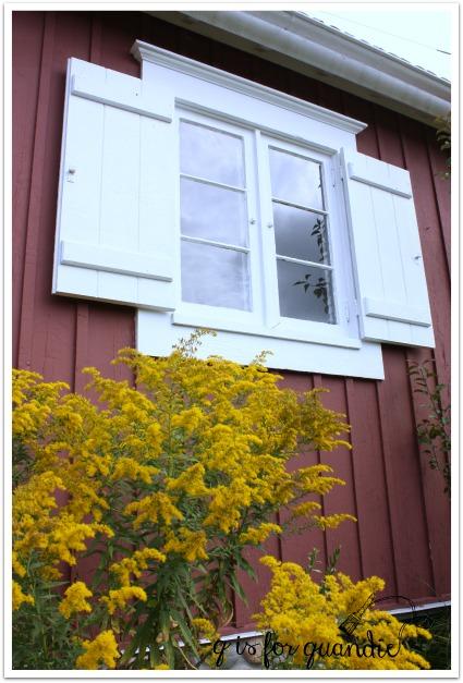 2011 window