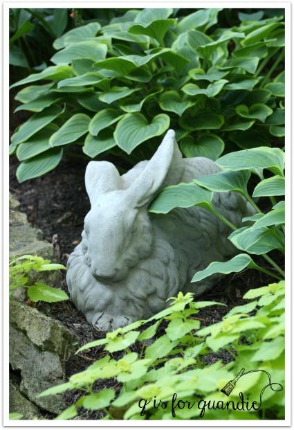 roseville bunny