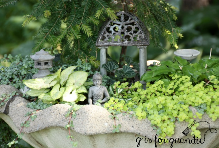 late summer fairy garden 2