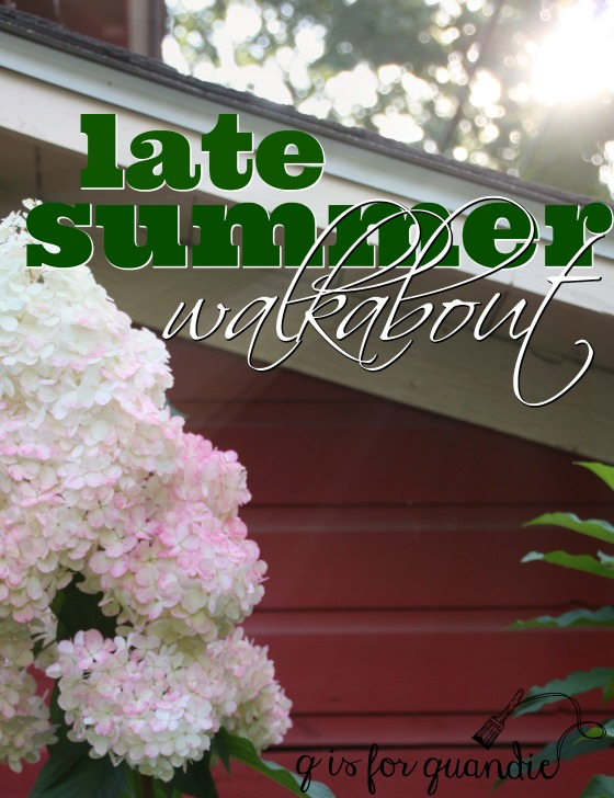 late summer walkabout