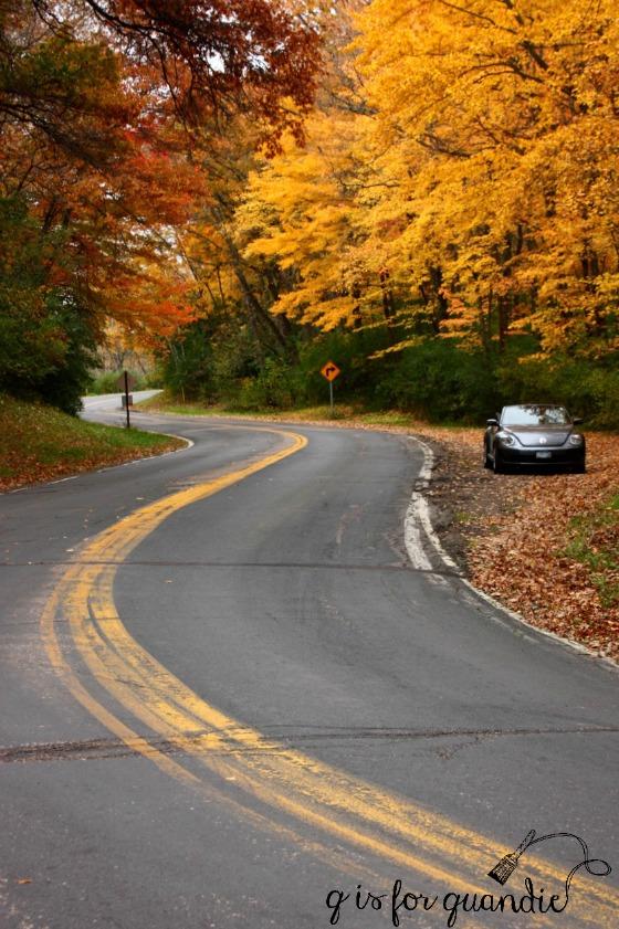 back-road