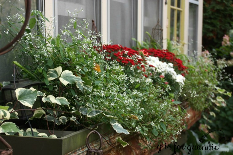fall-front-window-box