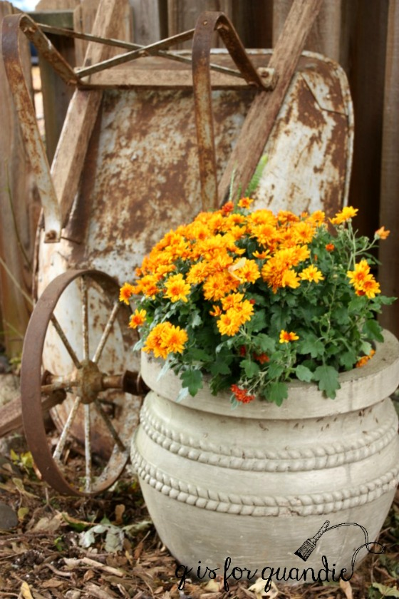 fall-wheelbarrow-and-mum