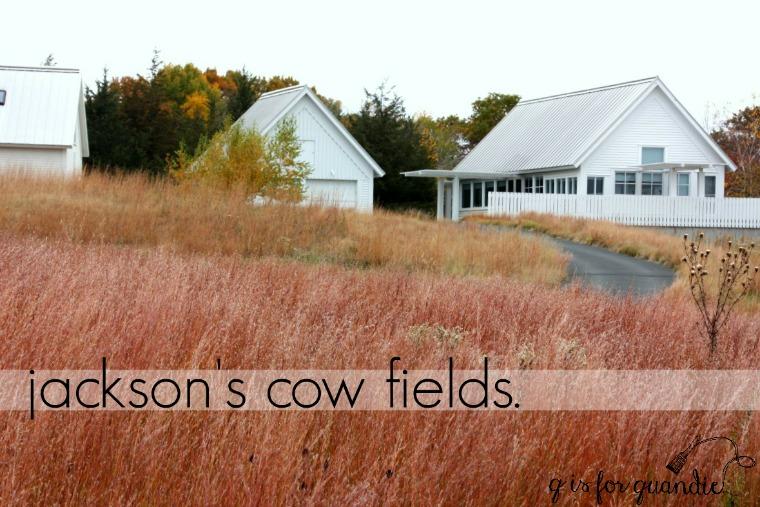 jackson-meadow-title-1280x853