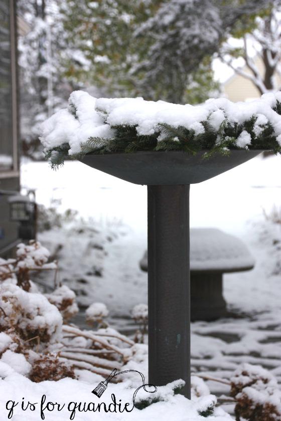 winter-birdbath