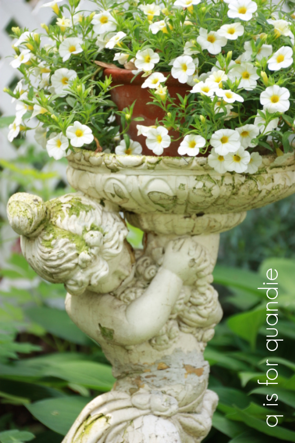 sues garden 1